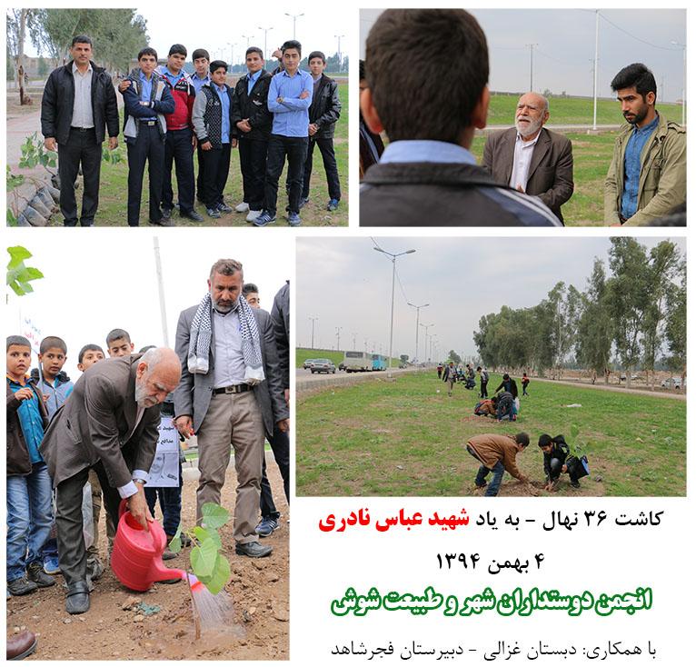 کاشت 36 نهال به مناسبت 36 سال عمر با عزت شهید جاویدان عباس نادری در ورودی شوش+انجمن دوستداران شهر و طبیعت شوش+ساسان ساکی