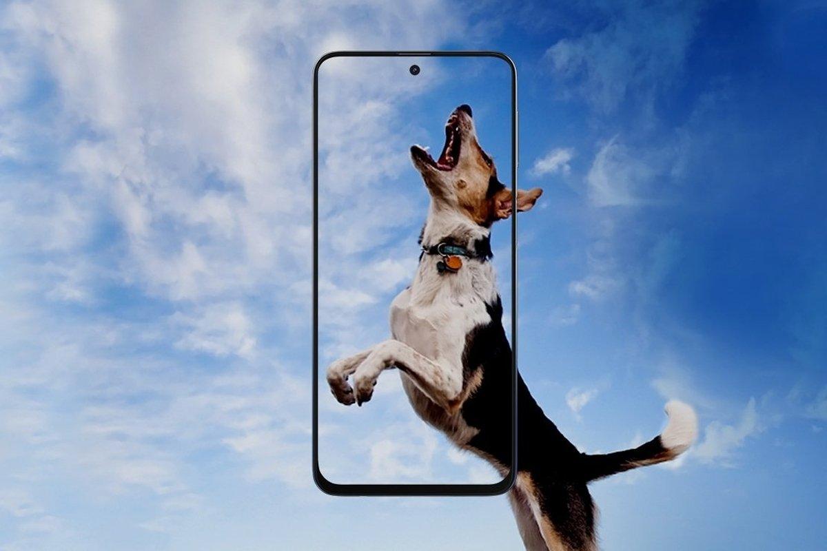 http://cdn.persiangig.com/preview/BevkL3pVVc//Samsung-Galaxy-M31s-03.jpg