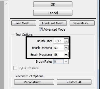 liquify settings