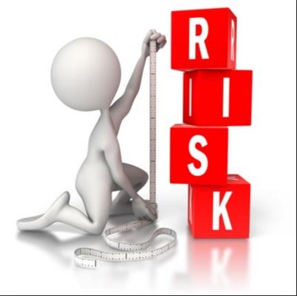 ریسک و تنوع بخشی