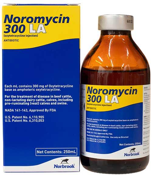noromycin
