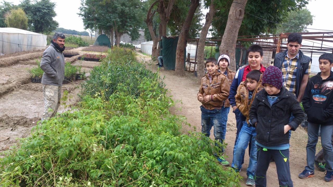 اولین کارگاه آموزش درختبانی برای درختبانان انجمن دوستداران شهر و طبیعت شوش