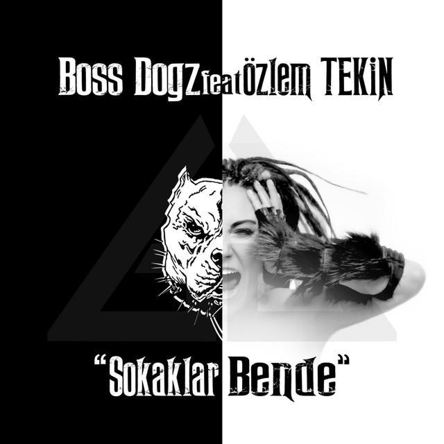 http://cdn.persiangig.com/preview/HCZVlHoZrb/ArazMusic98.IR.jpeg