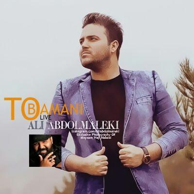 دانلود آهنگ زنده تو با منی از علی عبدالمالکی