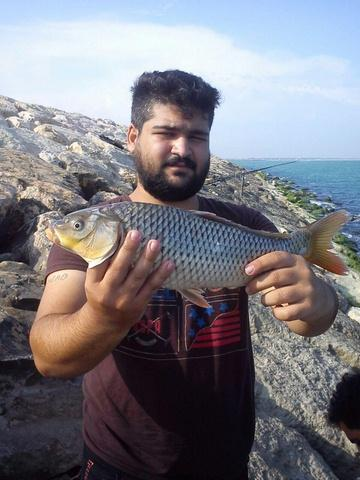 http://cdn.persiangig.com/preview/Wi83cfXeZe/large/nima_fishing_sari%20(6).jpg