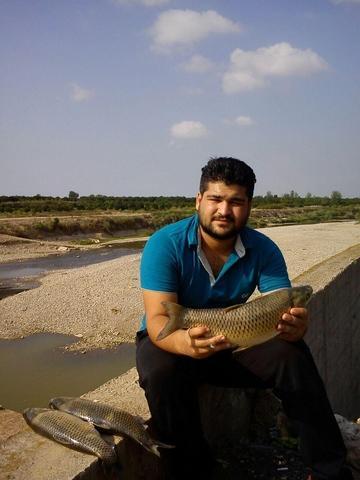 http://cdn.persiangig.com/preview/ZGutToRUH2/large/nima_fishing_sari%20(7).jpg