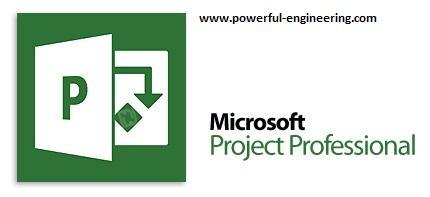 1352016539_microsoft-project-professional.jpg