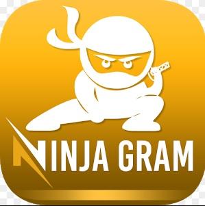 دانلود جدیدترین نینجاگرام 5.9.5 کرک شده -Ninjagram 5.9.5 Cracked