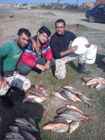 http://cdn.persiangig.com/preview/jbsYaylgFg/large/nima_fishing_sari%20(4).jpg