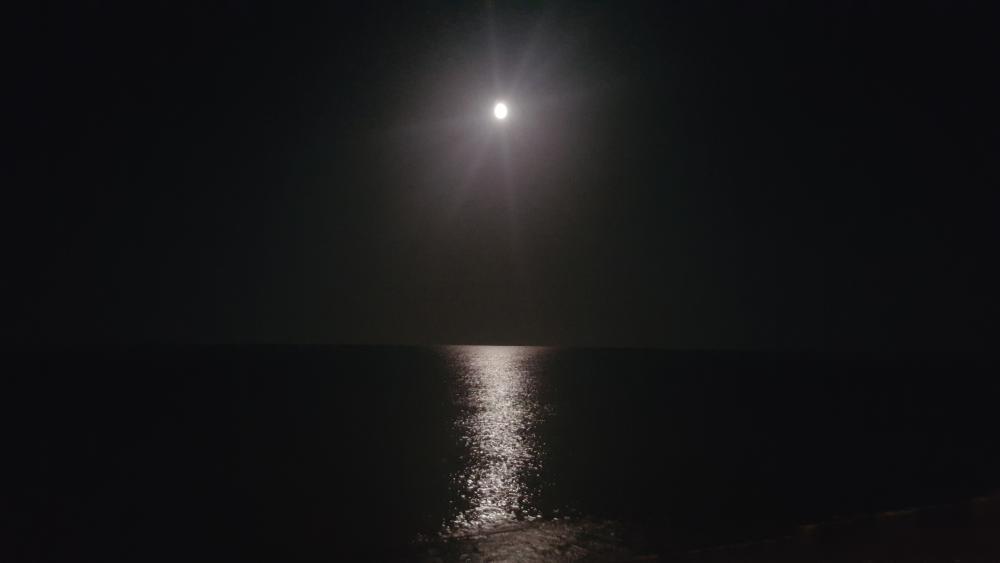 دریا+ساحل+موج+دریای صدف+آستارا+ساحل صدف آستارا+دریای صدف آستارا