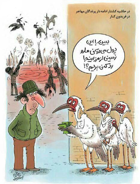 کشتار پرندگان