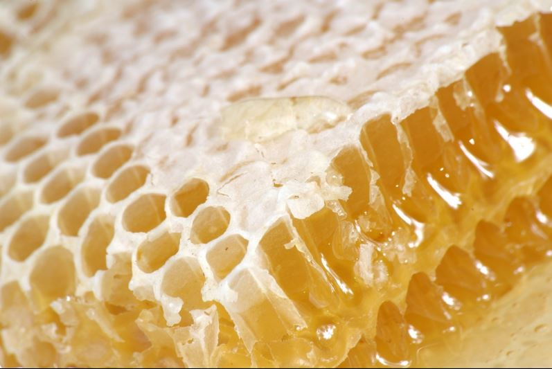دانلود تصویر بسیار با کیفیت از موم عسل